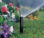 Ноу-хау: афера на… чистой воде
